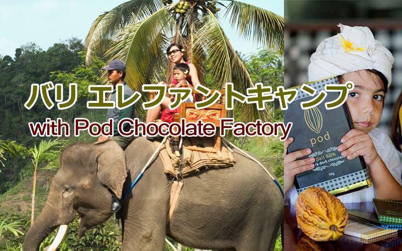 エレファントキャンプwithPod Chocolate